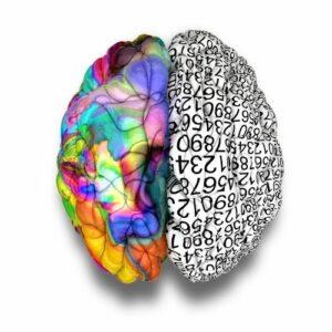 Afasia Infantil-Hemisferio izquierdo cerebro